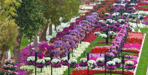 The Garden City - AL AIN PARADISE (2)