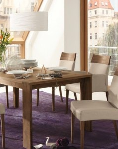 modern-dining-arm-chairs