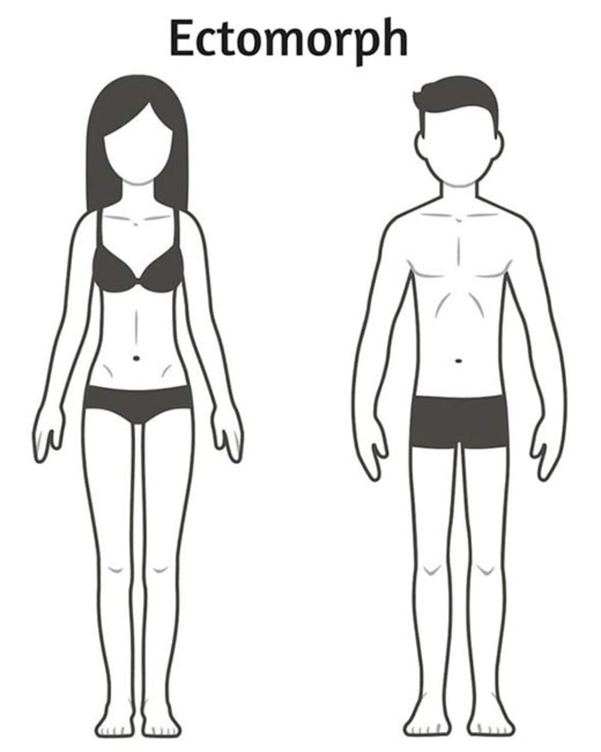 01-three-body-types-explained