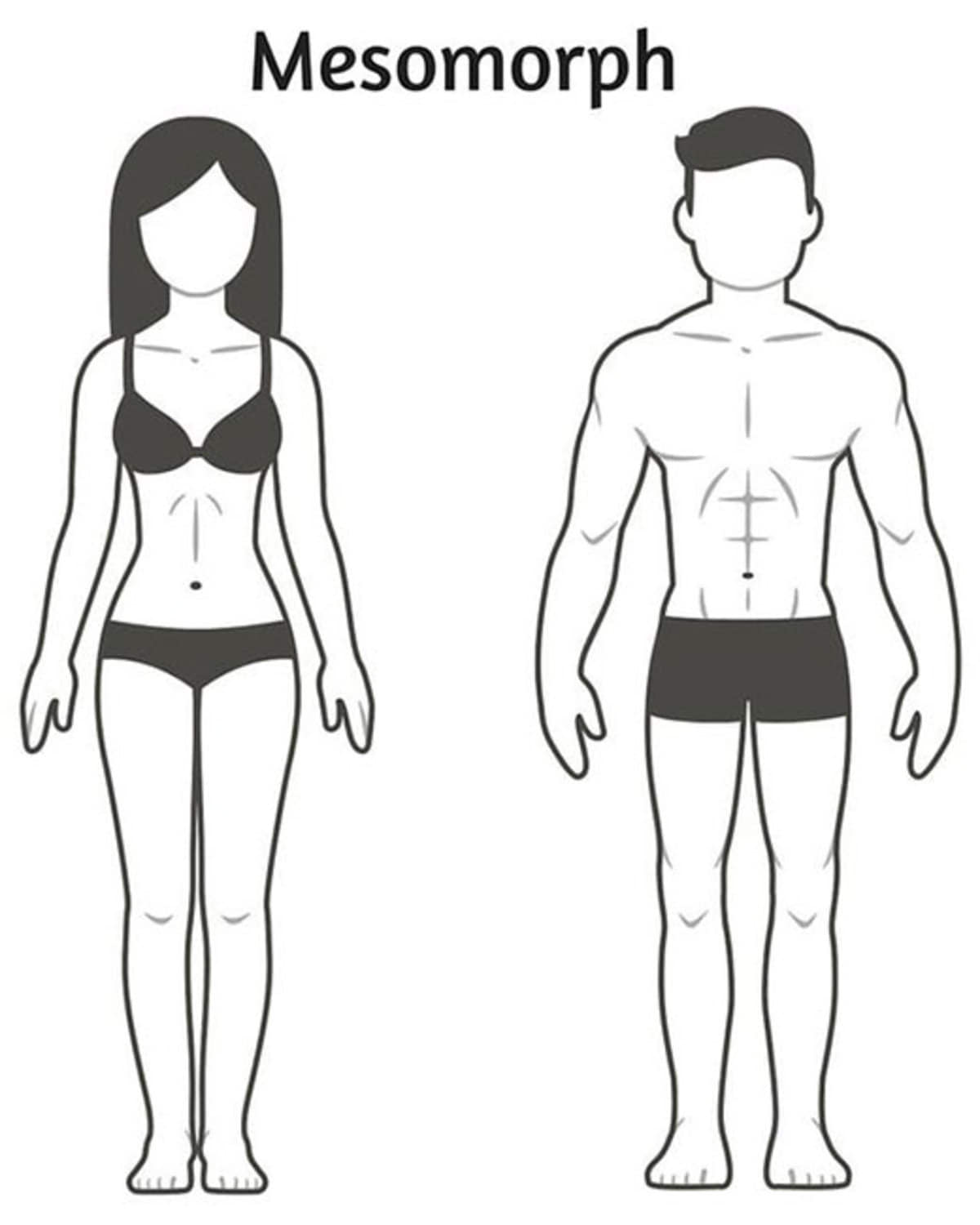 02-three-body-types-explained