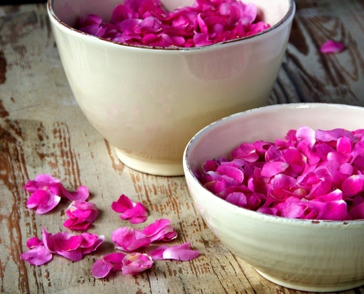 rose-water-health-benefits1