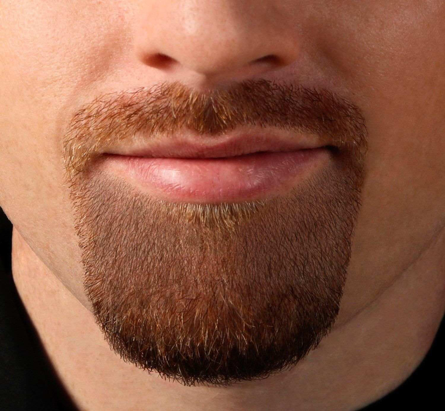 the-goatee-beard